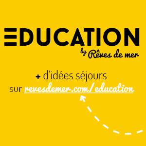 Education by Rêves de Mer