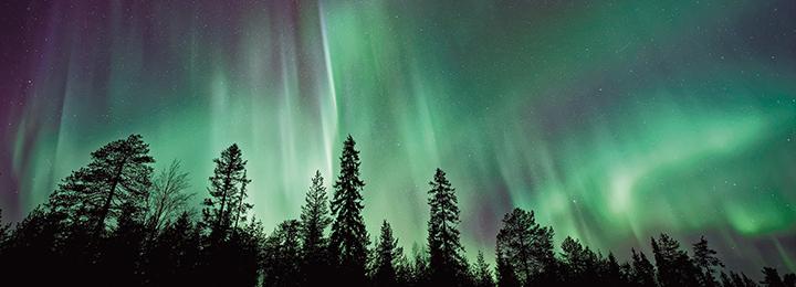 Aurore                                                            polaire,                                                            Spectral ©                                                            Unsplash